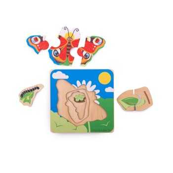 Bigjigs Toys Lifecycle...