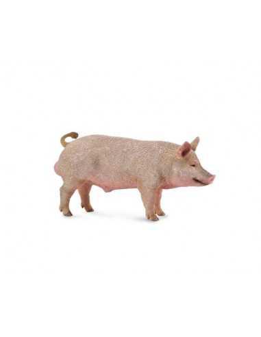 CollectA Boar