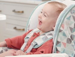 Graco Highchairs & Fun Pods